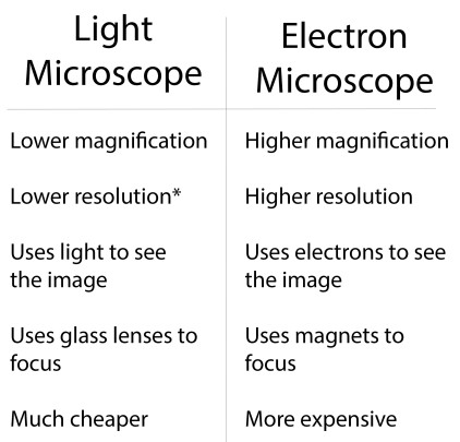 Microscope Table.jpg